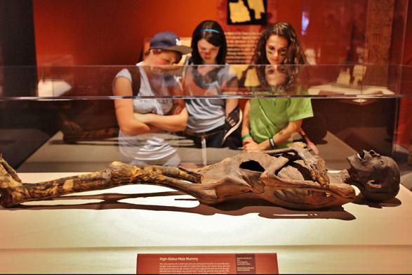 mummies-of-the-world-mummy-franklin-587