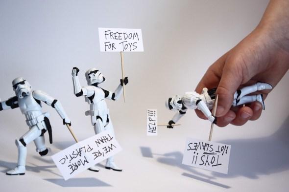 Toy Freedom on Chip Chop By Stéfan Le Dû