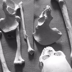 Bones at Etsy!
